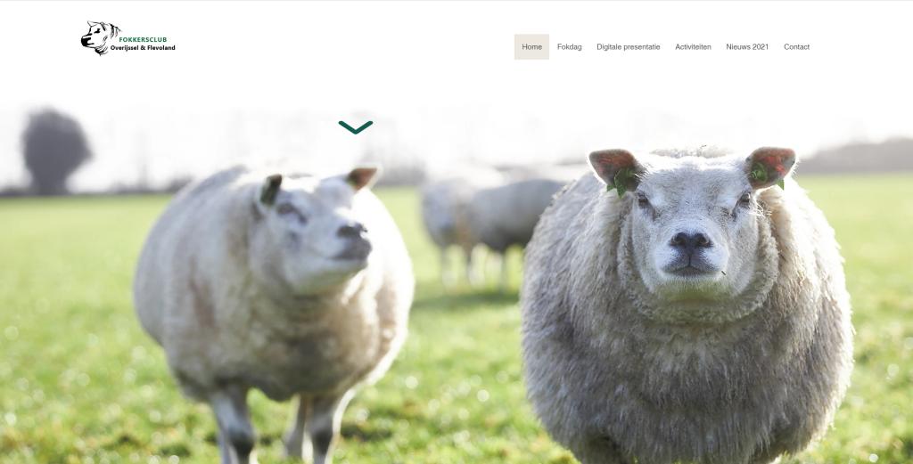 Nieuwe website fokkersclub Overijssel en Flevoland
